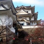 Iga Ueno Castle 1 ( Photo by Tanja Rauh)