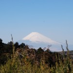 Mt.Fuji from Marie (photo by Kotodamaya)