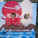 Face-in-the-hole board : Koitoi Beach
